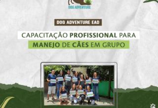 Capacitação Profissional para Manejo de Cães em Grupo / 8 horas